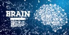 科技大脑深蓝背景