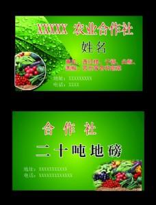 农业合作社名片