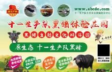 黑猪文化游乐园海报