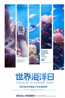 创意简约世界海洋日宣传海报