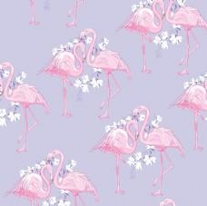 清新火烈鸟花卉