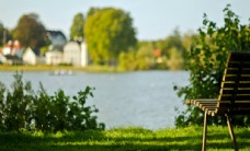 美丽村庄绿色风景护眼风景