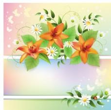春季精美花卉