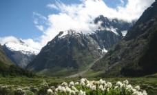 新西兰高清自然美景