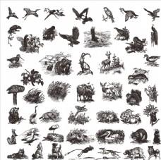 黑白素描动物图案
