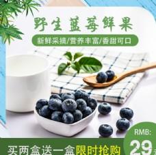 野生蓝莓主图