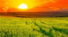 唯美夕阳余晖