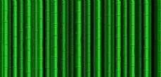 矢量竹子素材背景
