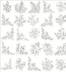 白描花卉植物素材线稿04