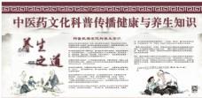 中医养生宣传栏