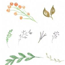 卡通手绘多种绿色叶子