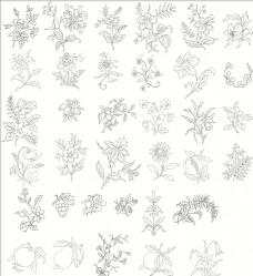 白描花卉植物素材线稿09