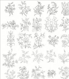 白描花卉植物素材线稿08