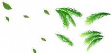 手绘绿色创意椰子叶子