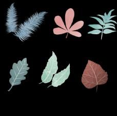手绘绿色叶子插画