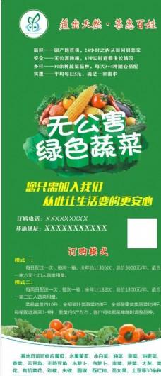 绿色蔬菜 展架