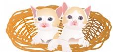 竹篮中两只小奶猫