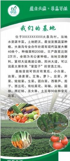 蔬菜 展架
