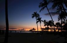 夏威夷风情