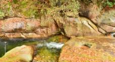 深秋的林间溪流风景