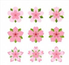 粉色带叶樱花
