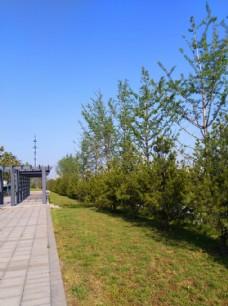 蓝天下的公园风景
