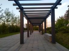 日暮下的公园风景