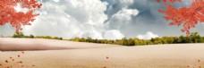 PSD设计素材 森林 麦浪