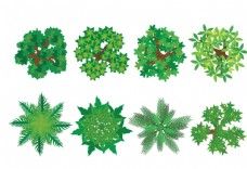 绿色茂盛树枝元素