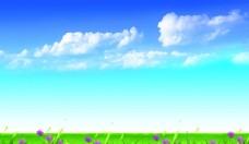 蓝天白云草地野花背景