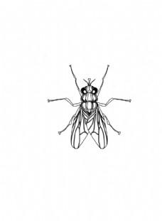 镭射苍蝇图案