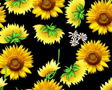 向日葵花型