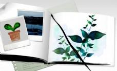 绿色植物照片相册合成桌面