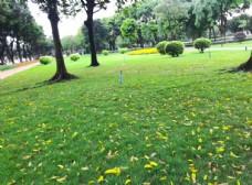 公园一角摄影图