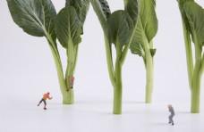 蔬菜创意小人