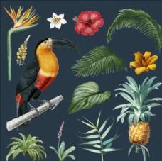 热带植物夏季海报素材