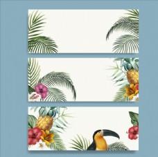 热带植物与鸟类
