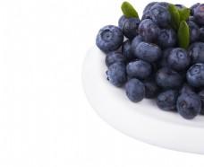 无公害蓝莓好吃美味