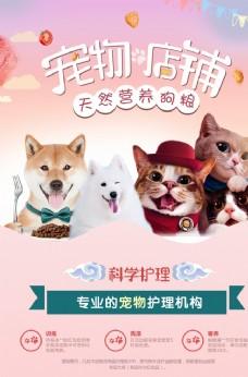 宠物海报 万千宠爱 一生相伴