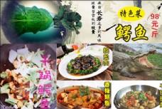 鳄鱼 菜  图片  菜单 鱼肉