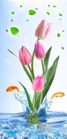 马蹄莲玉兰花水面盛夏
