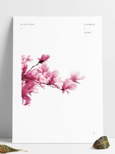 粉色美丽花朵装饰元素
