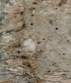 香格里拉绿大理石贴图纹理素材