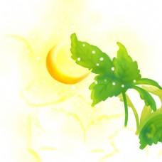 卡通月亮照在叶子上免扣图