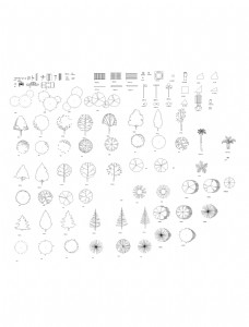 CAD立面树模型合集