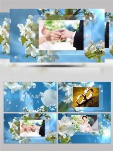 小清新鲜花盛开电子相册