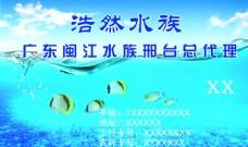 名片 水族馆 水底世界