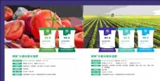 西红柿农业