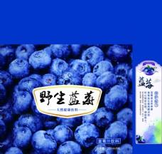蓝莓包装   展开图